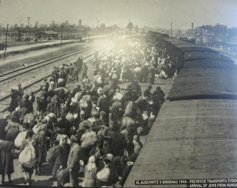 Auschwitz-ebrei-Ungheria
