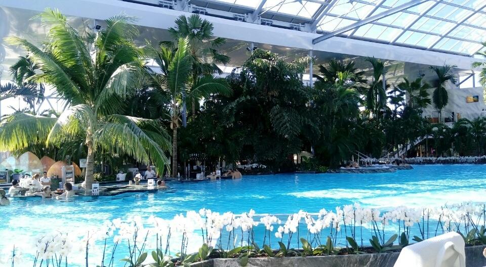 Terme-Bucarest-The-Palm