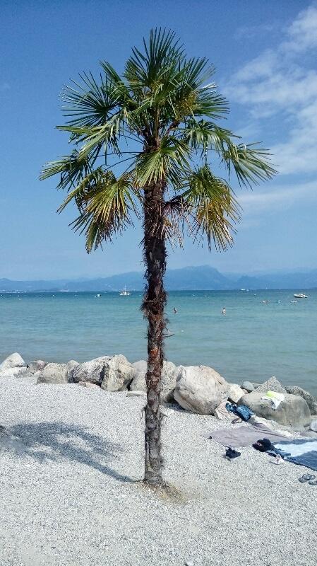 spiaggia-Peschiera