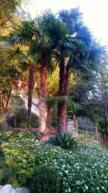 Giardino-Botanico-Parco-Varone