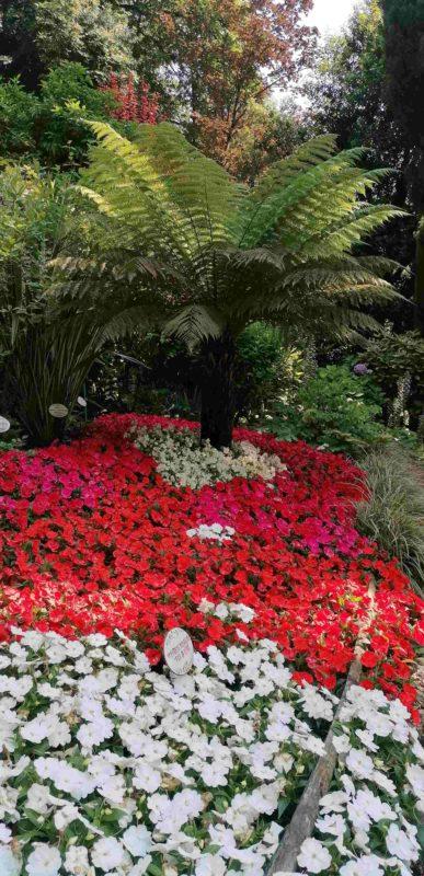 Giardino-botanico-Cascate