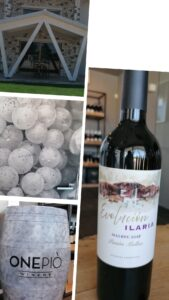Onepio-Winery