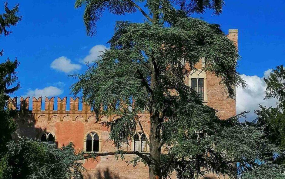 Castello di Bevilacqua: 700 anni di storia