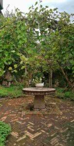 Giardino-Villa-Freya