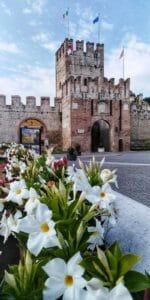 Soave-Verona