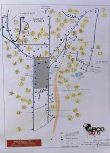 mappa-Parco-Sojo